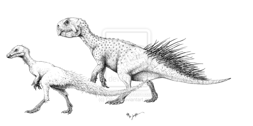 Tianyulong and Psittacosaurus by Jaime A. Headden. Both possess dorsal quills, but one is closer to Kulindadromeus than the other; phylogenetic bracketing ensues.