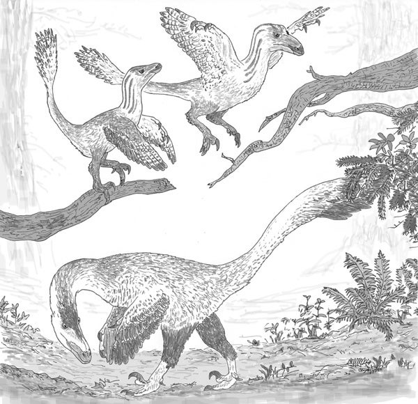 Deinonychus-ontogenetic-niche-shift-600-px-tiny-June-2015-Darren-Naish-Tetrapod-Zoology.jpg